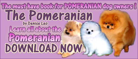 pomeranian guide book