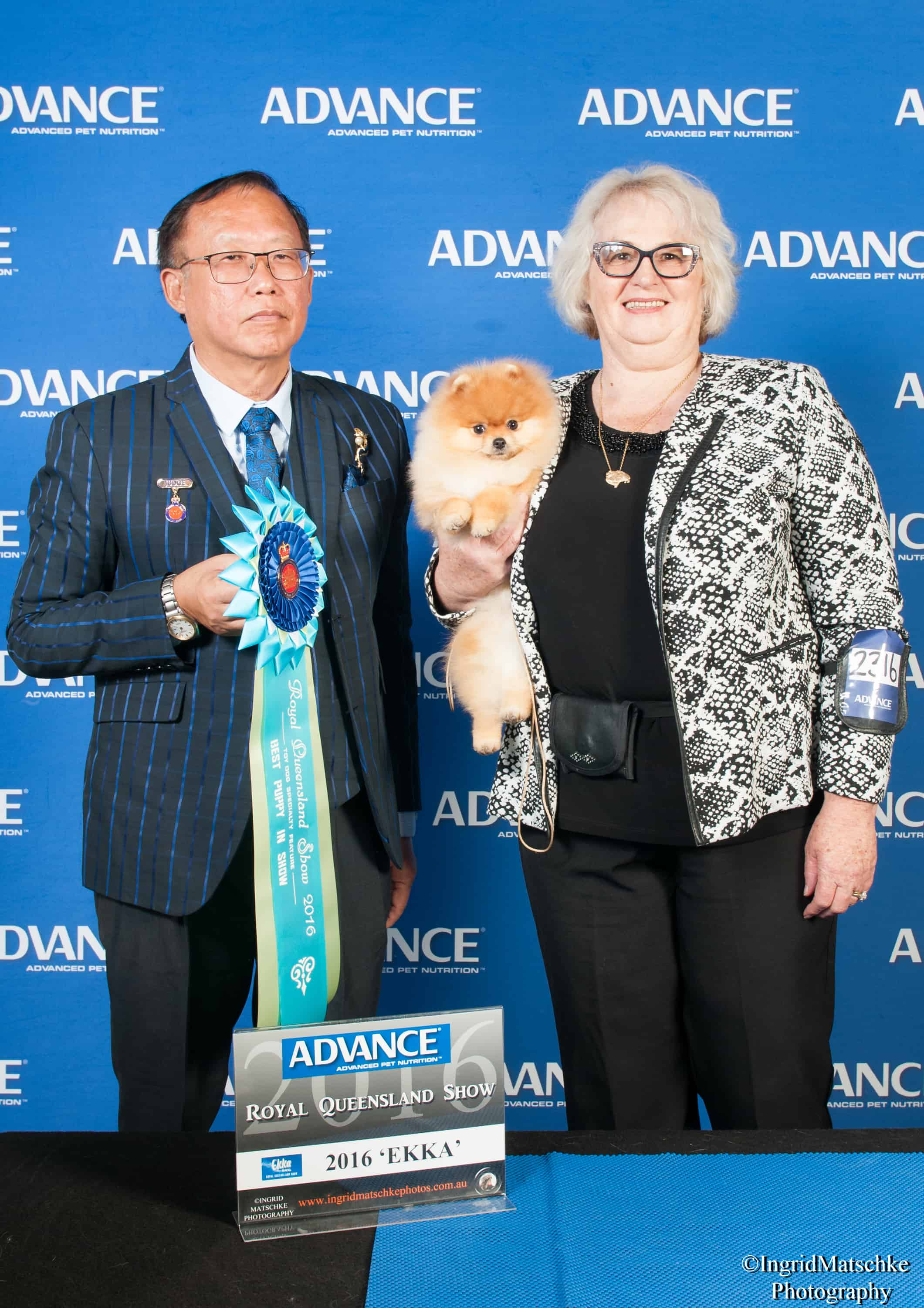Denise Leo and a pomeranian at Sydney Royal