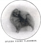 Ofleda Young Flashman